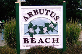Image result for arbutus beach, michigan